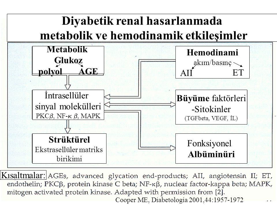 Diyabetik renal hasarlanmada metabolik ve hemodinamik etkileşimler Metabolik Glukoz polyol AGE İntrasellüler sinyal molekülleri PKC , NF-  , MAPK S