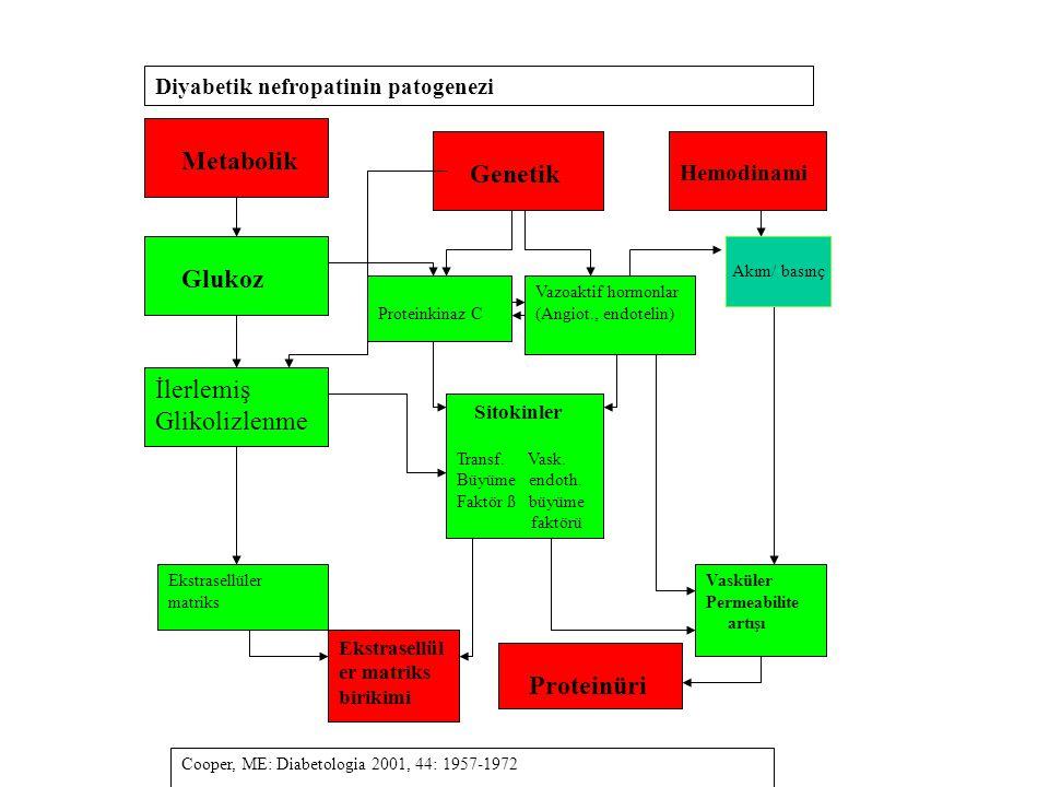 Metabolik Glukoz İlerlemiş Glikolizlenme Genetik Hemodinami Proteinkinaz C Vazoaktif hormonlar (Angiot., endotelin) Sitokinler Transf. Vask. Büyüme en