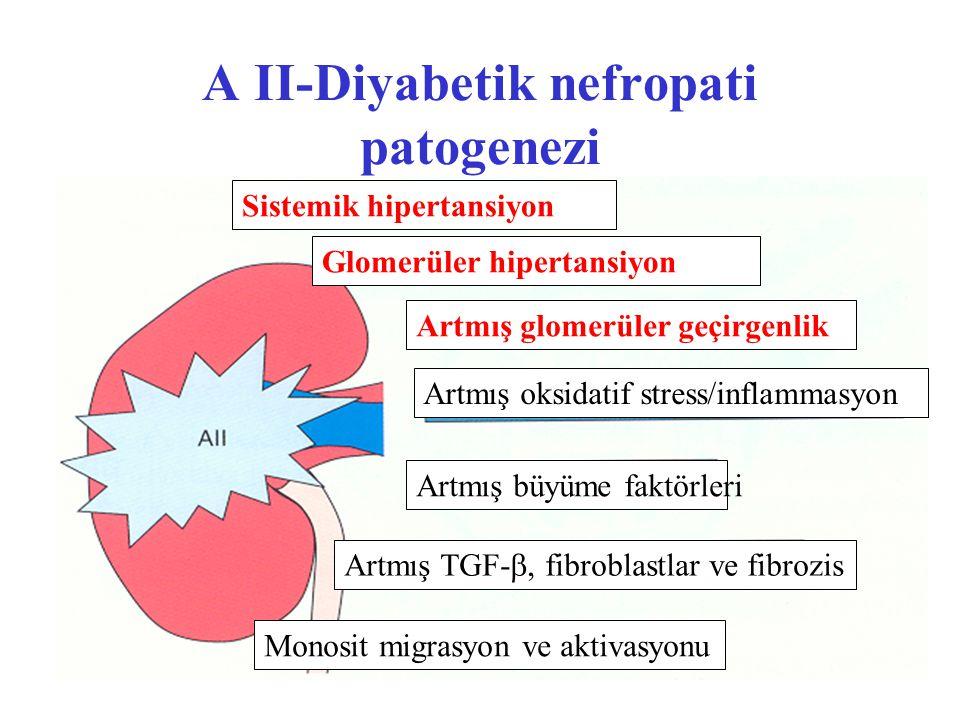 A II-Diyabetik nefropati patogenezi Sistemik hipertansiyon Glomerüler hipertansiyon Artmış glomerüler geçirgenlik Artmış oksidatif stress/inflammasyon