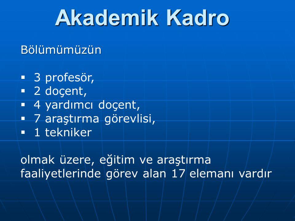 Akademik Kadro Bölümümüzün  3 profesör,  2 doçent,  4 yardımcı doçent,  7 araştırma görevlisi,  1 tekniker olmak üzere, eğitim ve araştırma faaliyetlerinde görev alan 17 elemanı vardır