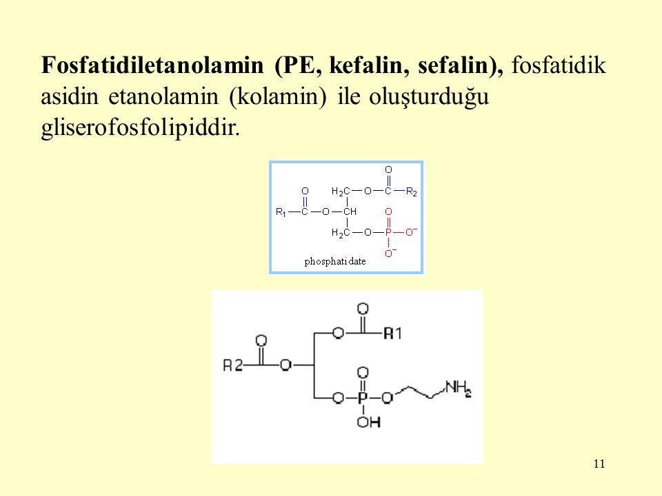 11 Fosfatidiletanolamin (PE, kefalin, sefalin), fosfatidik asidin etanolamin (kolamin) ile oluşturduğu gliserofosfolipiddir.