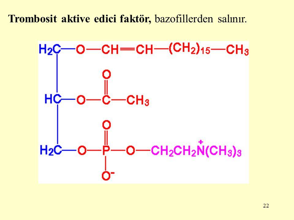 22 Trombosit aktive edici faktör, bazofillerden salınır.