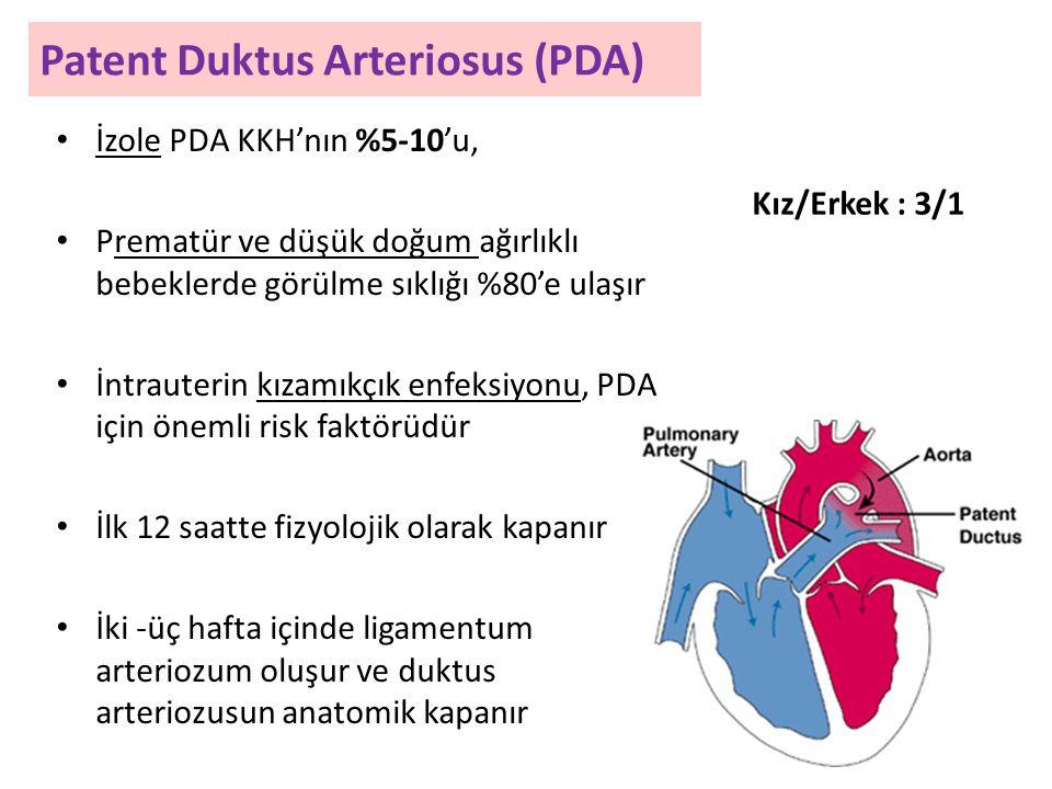 Patent Duktus Arteriosus (PDA) İzole PDA KKH'nın %5-10'u, Prematür ve düşük doğum ağırlıklı bebeklerde görülme sıklığı %80'e ulaşır İntrauterin kızamıkçık enfeksiyonu, PDA için önemli risk faktörüdür İlk 12 saatte fizyolojik olarak kapanır İki -üç hafta içinde ligamentum arteriozum oluşur ve duktus arteriozusun anatomik kapanır Kız/Erkek : 3/1