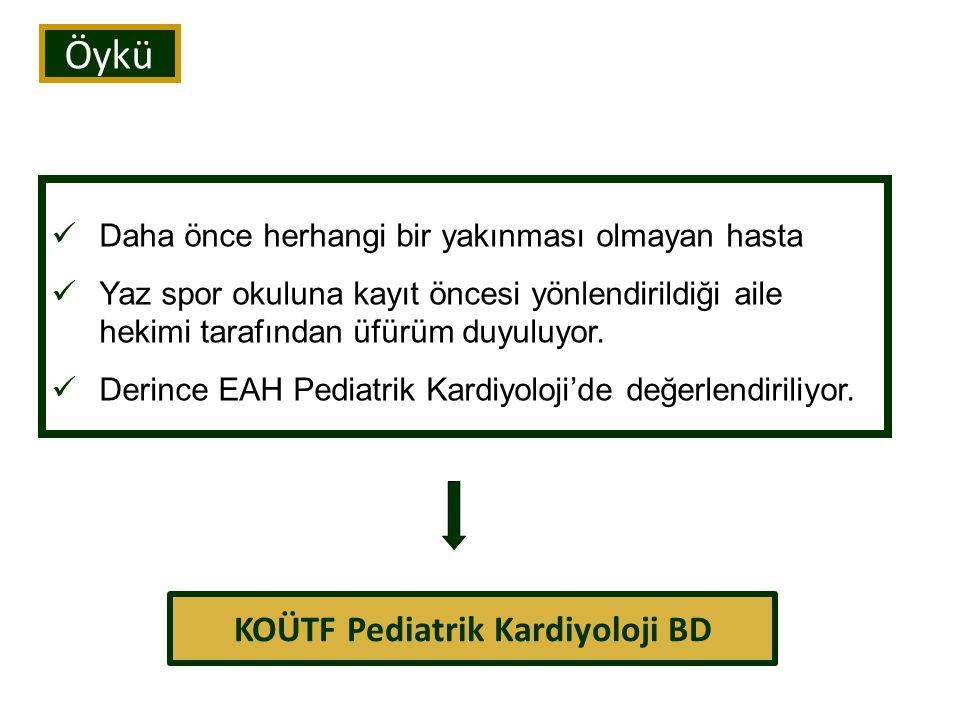 PDA-Patofizyoloji Hemodinami VSD'ye benzer.
