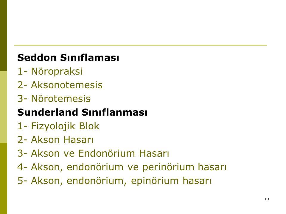 13 Seddon Sınıflaması 1- Nöropraksi 2- Aksonotemesis 3- Nörotemesis Sunderland Sınıflanması 1- Fizyolojik Blok 2- Akson Hasarı 3- Akson ve Endonörium Hasarı 4- Akson, endonörium ve perinörium hasarı 5- Akson, endonörium, epinörium hasarı