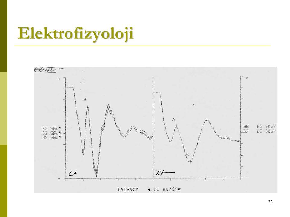 33 Elektrofizyoloji