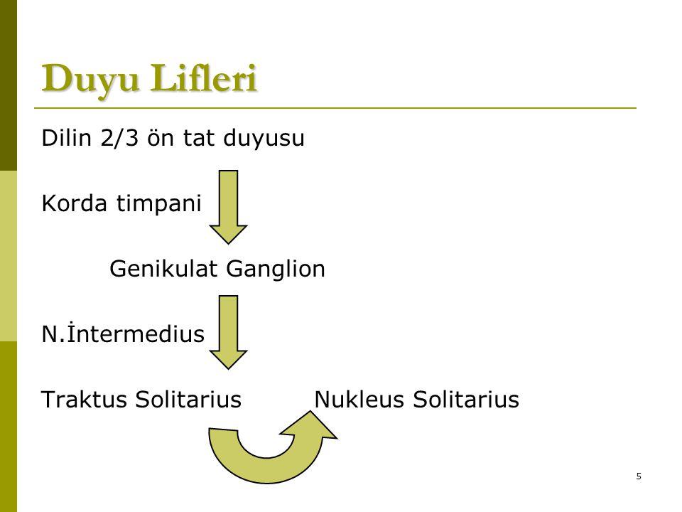 5 Duyu Lifleri Dilin 2/3 ön tat duyusu Korda timpani Genikulat Ganglion N.İntermedius Traktus SolitariusNukleus Solitarius