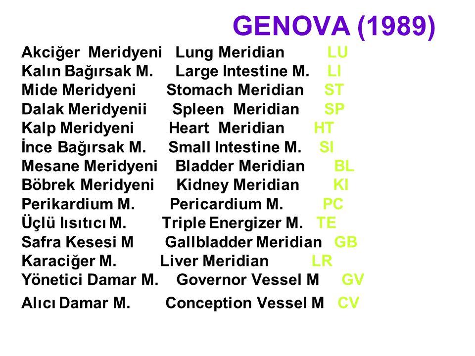 GENOVA (1989) Akciğer Meridyeni Lung Meridian LU Kalın Bağırsak M. Large Intestine M. LI Mide Meridyeni Stomach Meridian ST Dalak Meridyenii Spleen Me