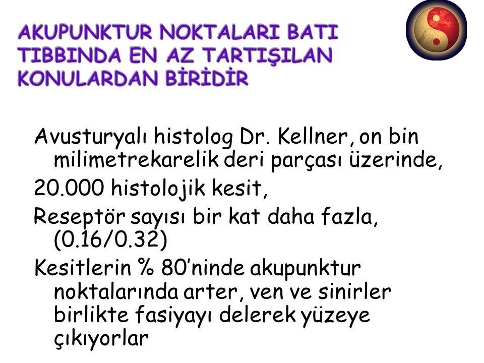 Avusturyalı histolog Dr. Kellner, on bin milimetrekarelik deri parçası üzerinde, 20.000 histolojik kesit, Reseptör sayısı bir kat daha fazla, (0.16/0.