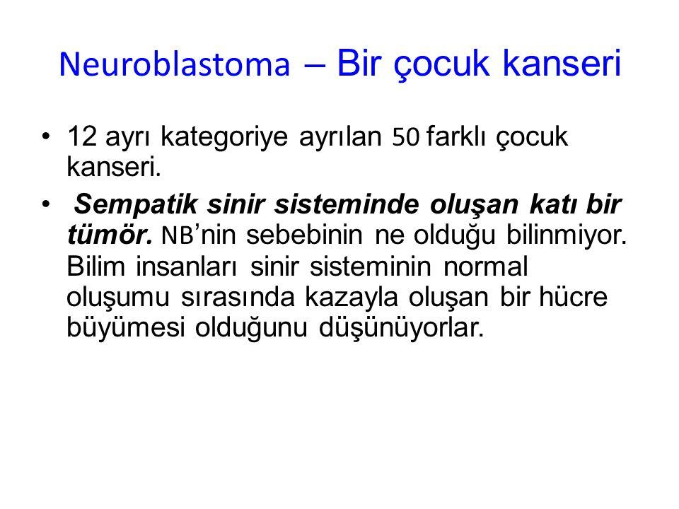 Neuroblastoma tümörleri … NB'nin en çok baş gösterdiği yer böbreklerin üstündeki bezler.