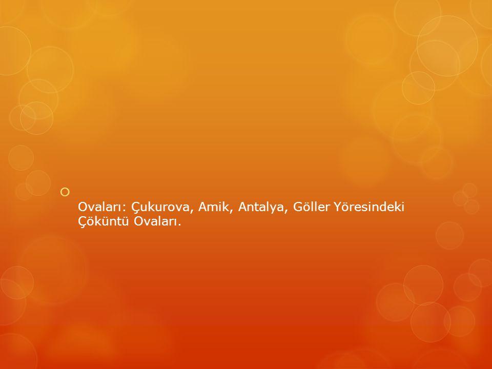  Ovaları: Çukurova, Amik, Antalya, Göller Yöresindeki Çöküntü Ovaları.