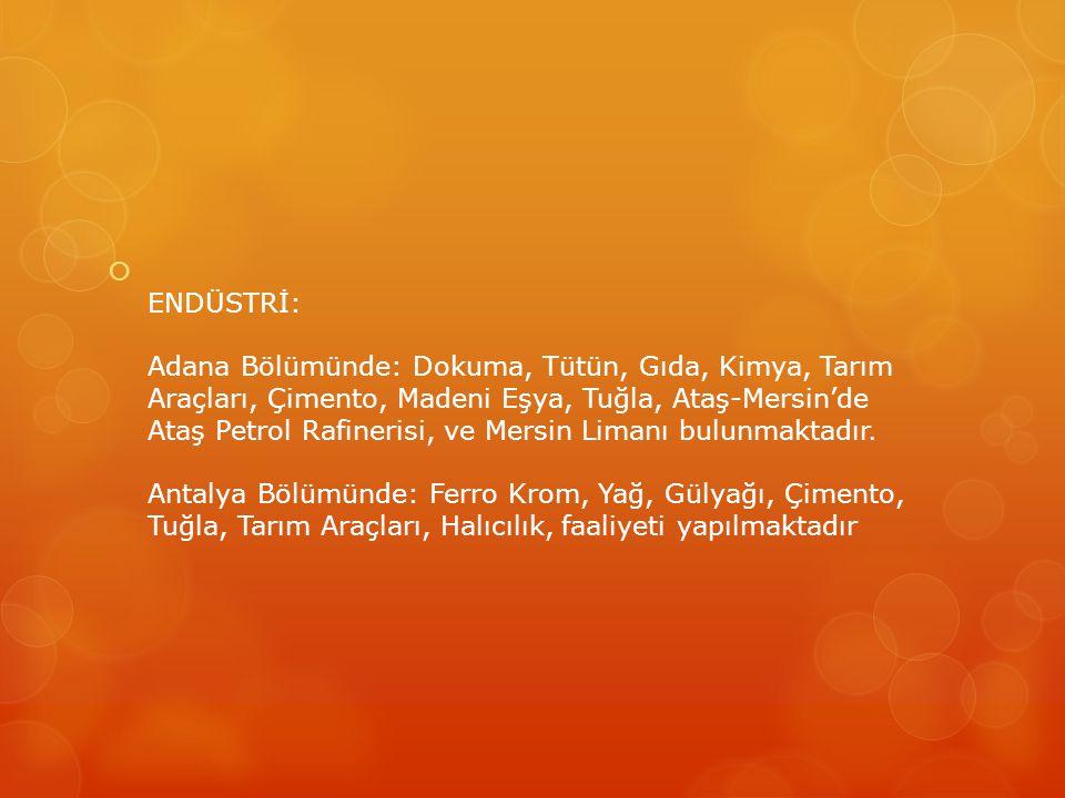  ENDÜSTRİ: Adana Bölümünde: Dokuma, Tütün, Gıda, Kimya, Tarım Araçları, Çimento, Madeni Eşya, Tuğla, Ataş-Mersin'de Ataş Petrol Rafinerisi, ve Mersin Limanı bulunmaktadır.