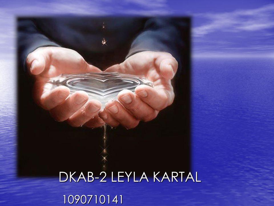LEYLA KARTAL DKAB-2 LEYLA KARTAL 1090710141 1090710141