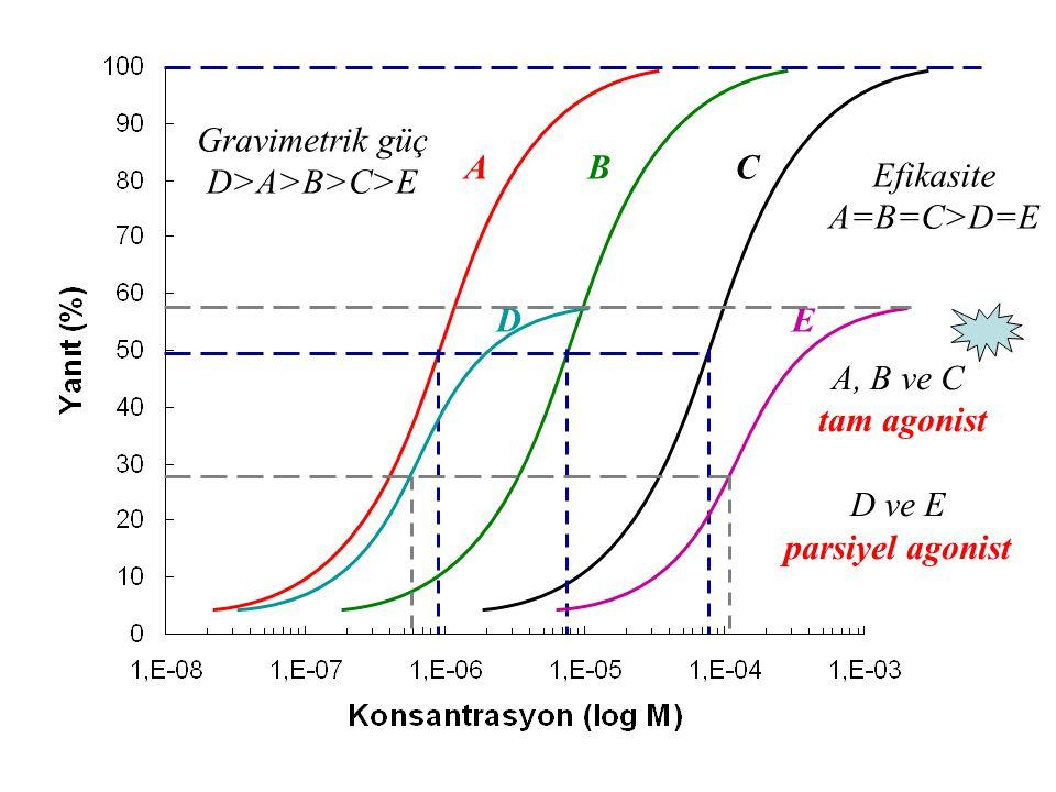 ABC Gravimetrik güç D>A>B>C>E Efikasite A=B=C>D=E DE A, B ve C tam agonist D ve E parsiyel agonist