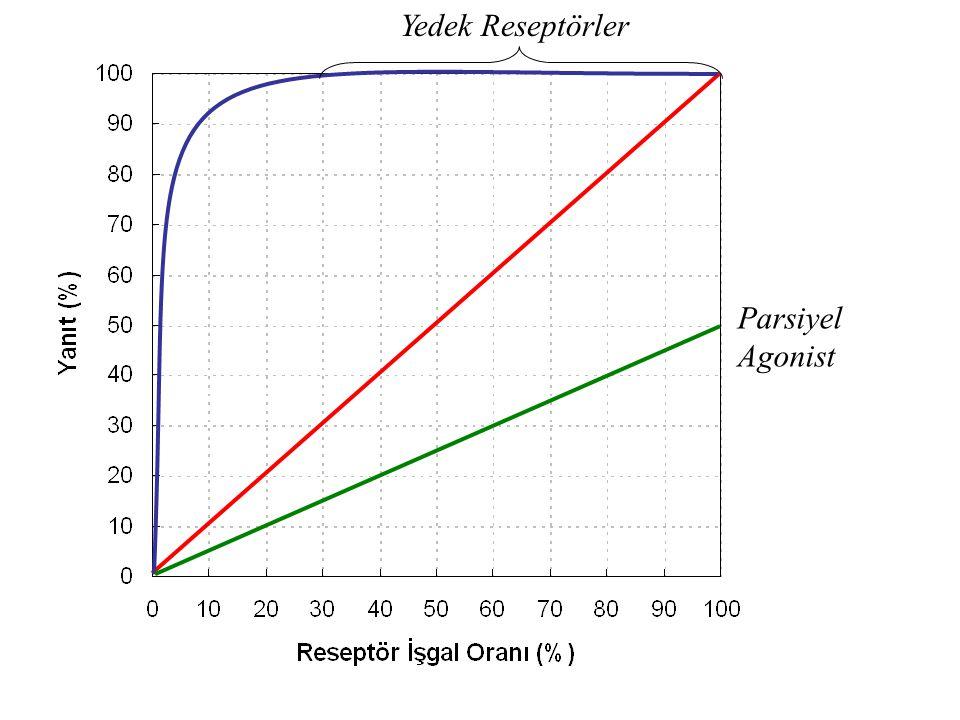 Yedek Reseptörler Parsiyel Agonist
