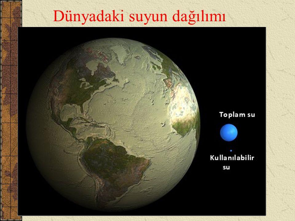 Dünyadaki suyun tatlı ve kullanılabilir durumda olan kısmı toplam suyun 1/100'inden azdır.