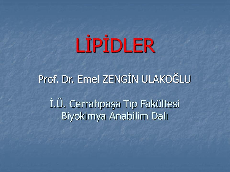 LİPİDLER Prof. Dr. Emel ZENGİN ULAKOĞLU İ.Ü. Cerrahpaşa Tıp Fakültesi Biyokimya Anabilim Dalı