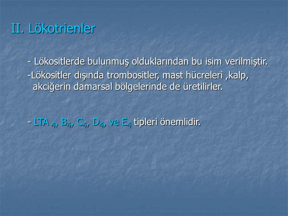 II. Lökotrienler - Lökositlerde bulunmuş olduklarından bu isim verilmiştir. - Lökositlerde bulunmuş olduklarından bu isim verilmiştir. -Lökositler dış