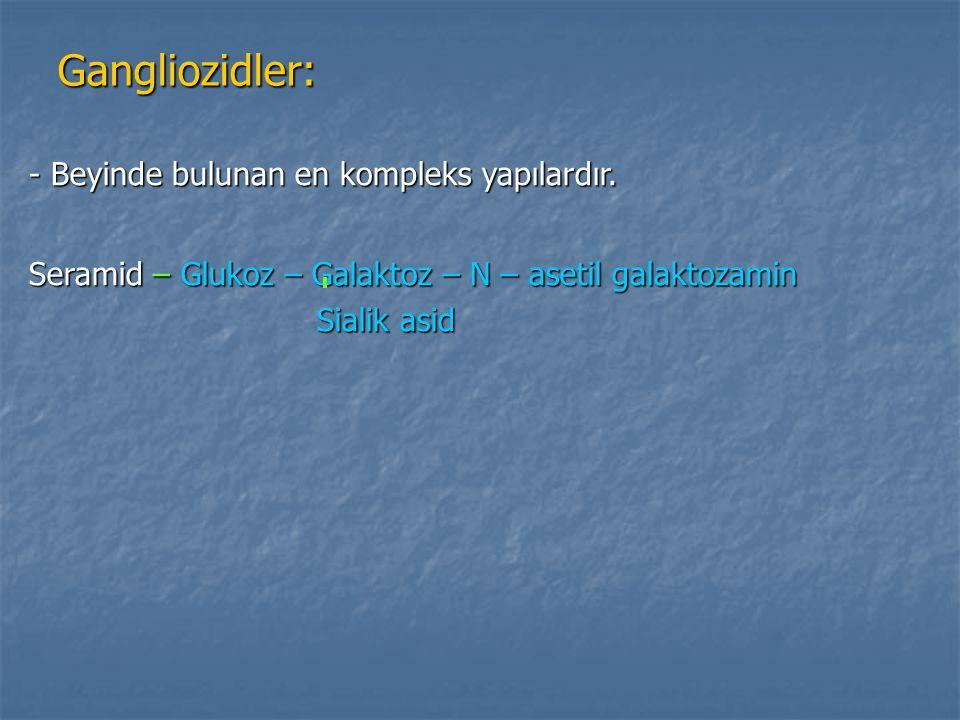 Gangliozidler: Gangliozidler: - Beyinde bulunan en kompleks yapılardır. Seramid – Glukoz – Galaktoz – N – asetil galaktozamin Sialik asid