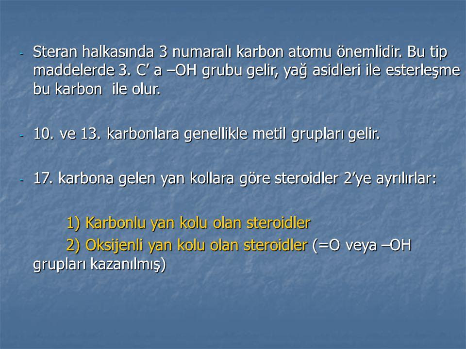 - Steran halkasında 3 numaralı karbon atomu önemlidir. Bu tip maddelerde 3. C' a –OH grubu gelir, yağ asidleri ile esterleşme bu karbon ile olur. - 10