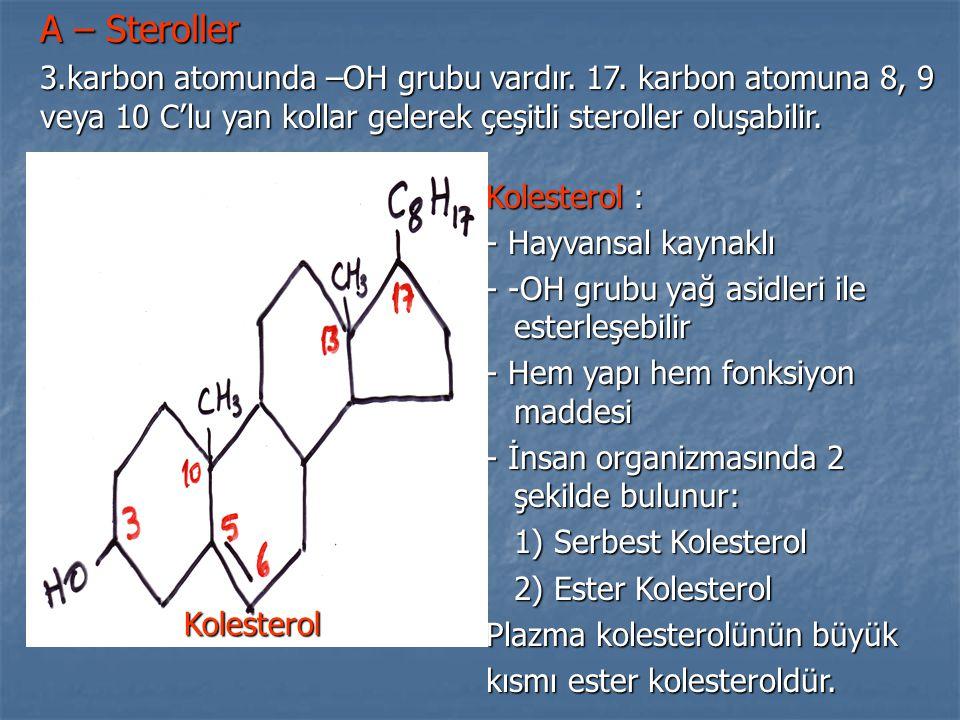 A – Steroller 3.karbon atomunda –OH grubu vardır. 17. karbon atomuna 8, 9 veya 10 C'lu yan kollar gelerek çeşitli steroller oluşabilir. Kolesterol Kol