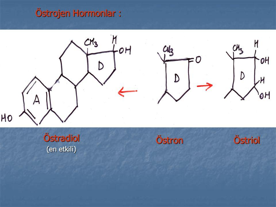 Östrojen Hormonlar : Östradiol (en etkili) ÖstronÖstriol