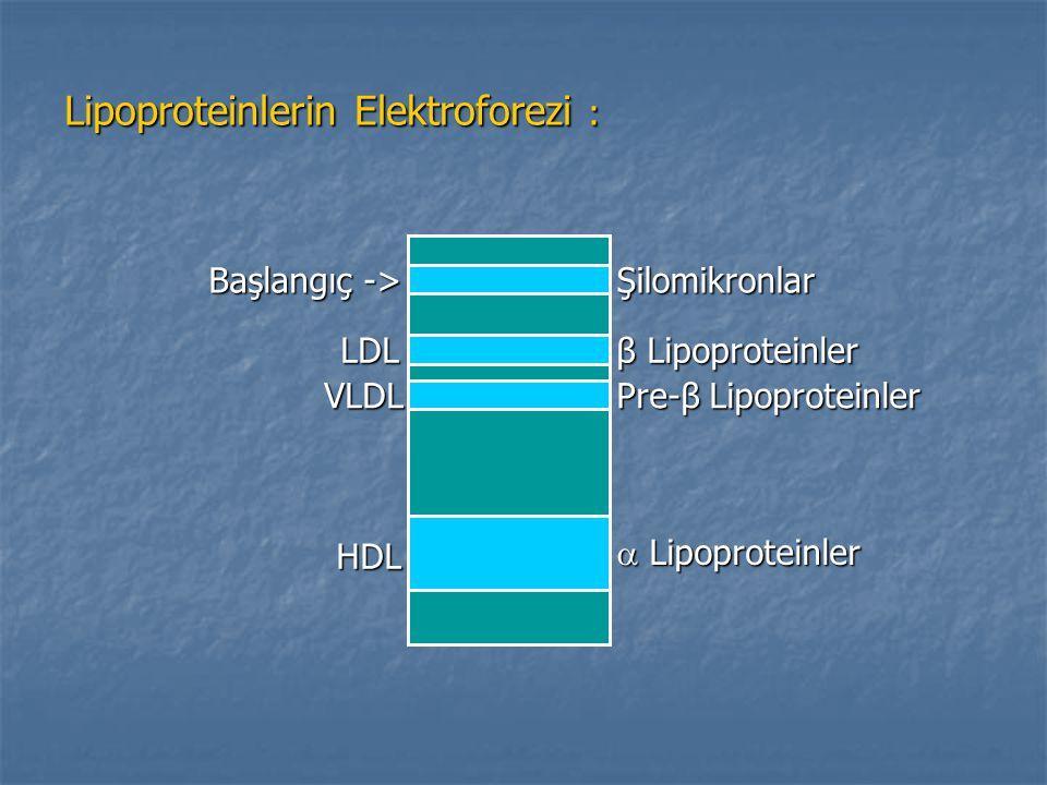 Lipoproteinlerin Elektroforezi : Başlangıç -> Şilomikronlar LDL β Lipoproteinler VLDL Pre-β Lipoproteinler HDL  Lipoproteinler