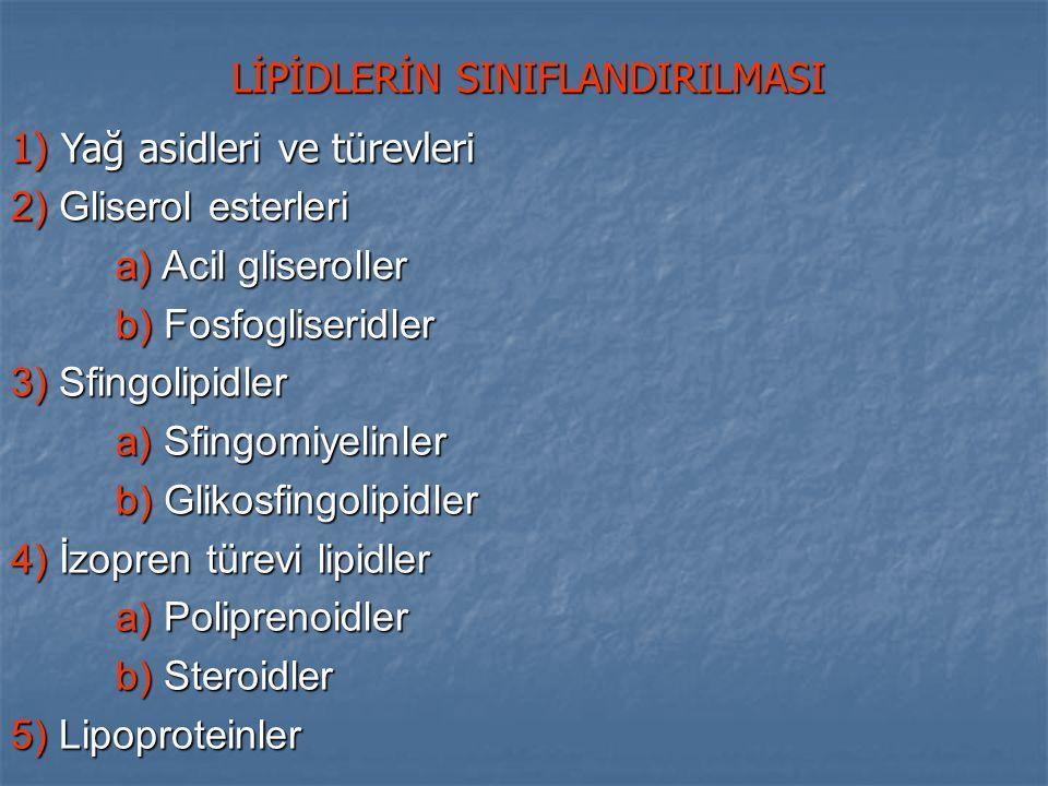 Fosfogliserid - Fosfat - Amino alkol veya inozitol - Fosfat - Amino alkol veya inozitol Gliserol 1 2 3 Yağ asidi esteri Digliserid 1.