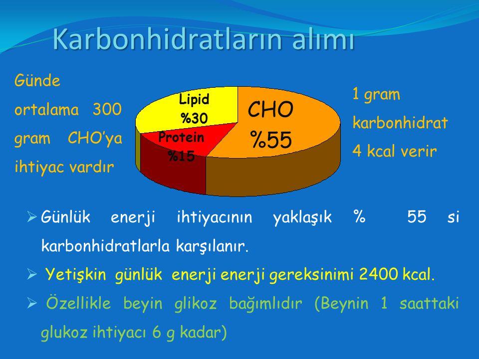 Karbonhidrat Karbo = Karbon (Carbon,C) Hidrat = Hidro (Hydro) Yunanca'da su içerme) CX(H20)YCX(H20)Y