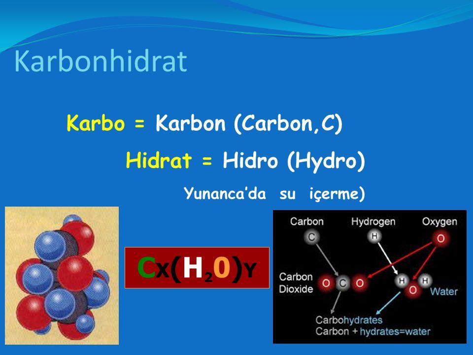 Büyük çoğunluğu güneş ışığı enerjisiyle atmosferdeki karbondioksidin suyla fotosentezi sonucu oluşan biyomoleküllerdir.