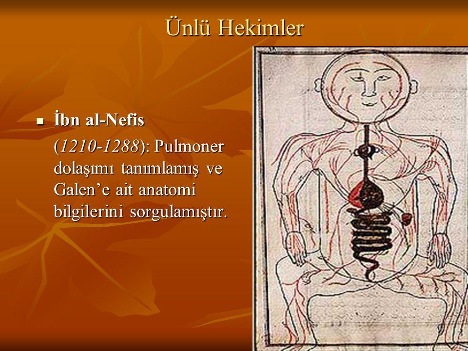Ünlü Hekimler İbn al-Nefis İbn al-Nefis (1210-1288): Pulmoner dolaşımı tanımlamış ve Galen'e ait anatomi bilgilerini sorgulamıştır.
