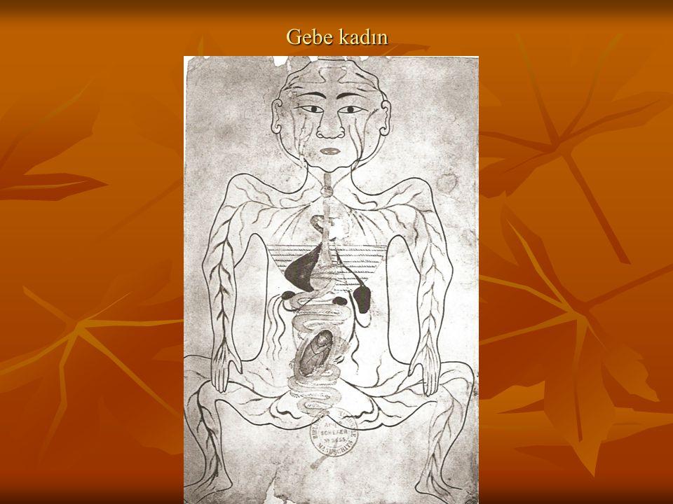 İSLAM MEDENİYETİNDE TIP Yunan ve Roma bilimsel çalışmalarının Avrupa'da kaybı Yunan ve Roma bilimsel çalışmalarının Avrupa'da kaybı Bu eserlerin İslam medeniyetinde çevirisinin yapılması Bu eserlerin İslam medeniyetinde çevirisinin yapılması