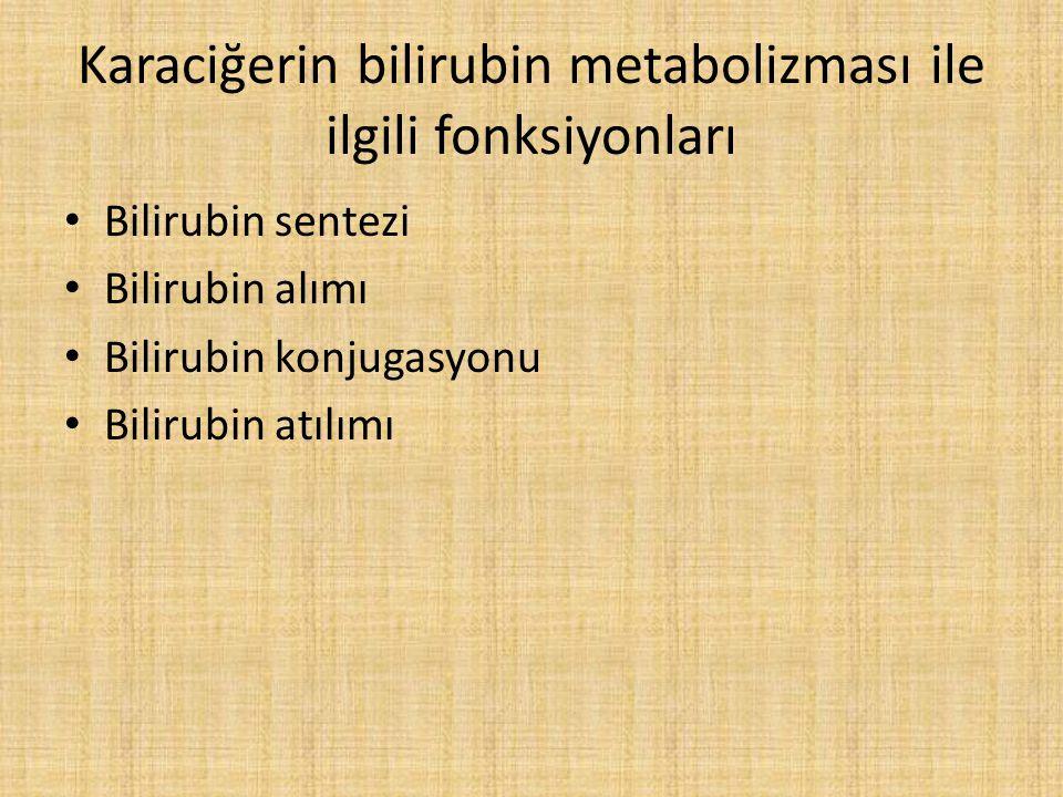 Karaciğerin bilirubin metabolizması ile ilgili fonksiyonları Bilirubin sentezi Bilirubin alımı Bilirubin konjugasyonu Bilirubin atılımı