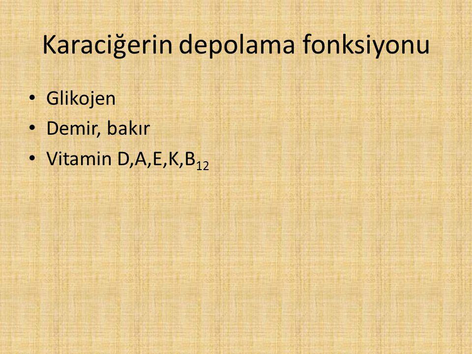 Karaciğerin depolama fonksiyonu Glikojen Demir, bakır Vitamin D,A,E,K,B 12