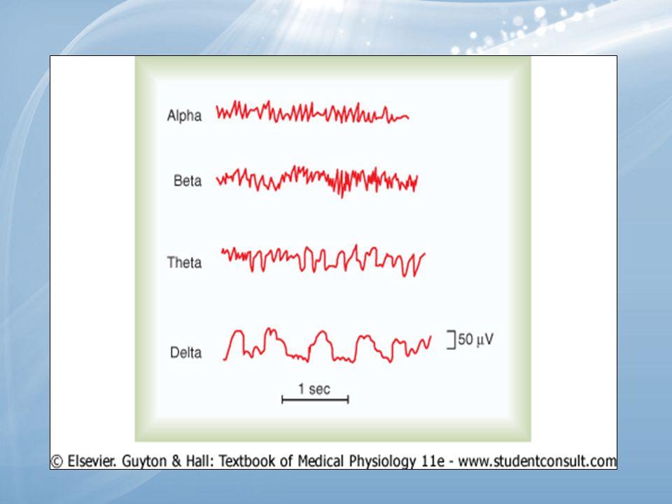 Sonuç Bu bulgular bize Corpus Callosum'a akupunktur uygulanan grupta 1.