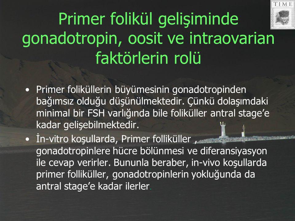 Primer folikül gelişiminde gonadotropin, oosit ve int ra ovarian faktörlerin rolü Primer foliküllerin büyümesinin gonadotropinden bağımsız olduğu düşü