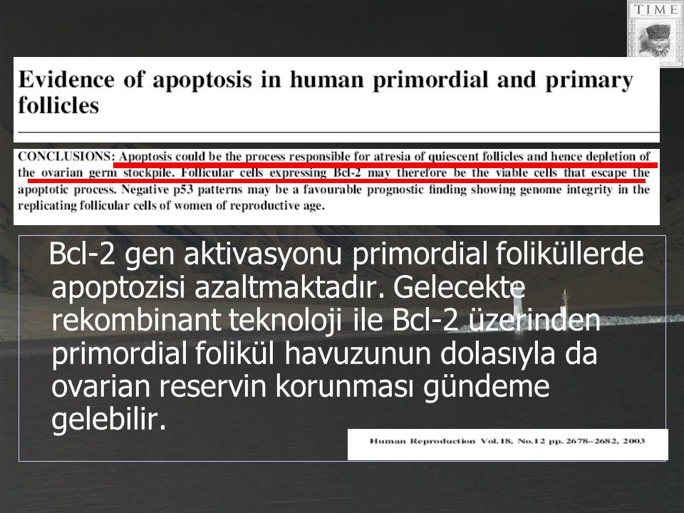 Bcl-2 gen aktivasyonu primordial foliküllerde apoptozisi azaltmaktadır. Gelecekte rekombinant teknoloji ile Bcl-2 üzerinden primordial folikül havuzun