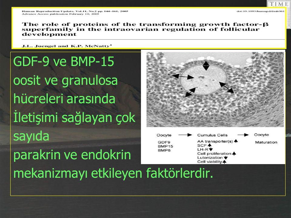 GDF-9 ve BMP-15 oosit ve granulosa hücreleri arasında İletişimi sağlayan çok sayıda parakrin ve endokrin mekanizmayı etkileyen faktörlerdir.