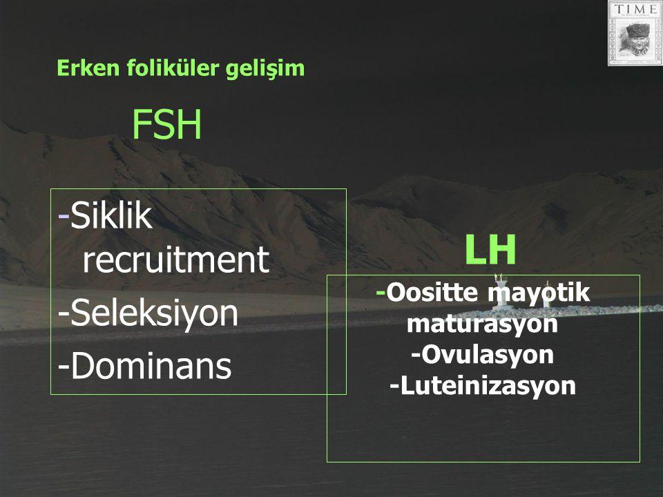 FSH -Siklik recruitment -Seleksiyon -Dominans LH -Oositte mayotik maturasyon -Ovulasyon -Luteinizasyon Erken foliküler gelişim