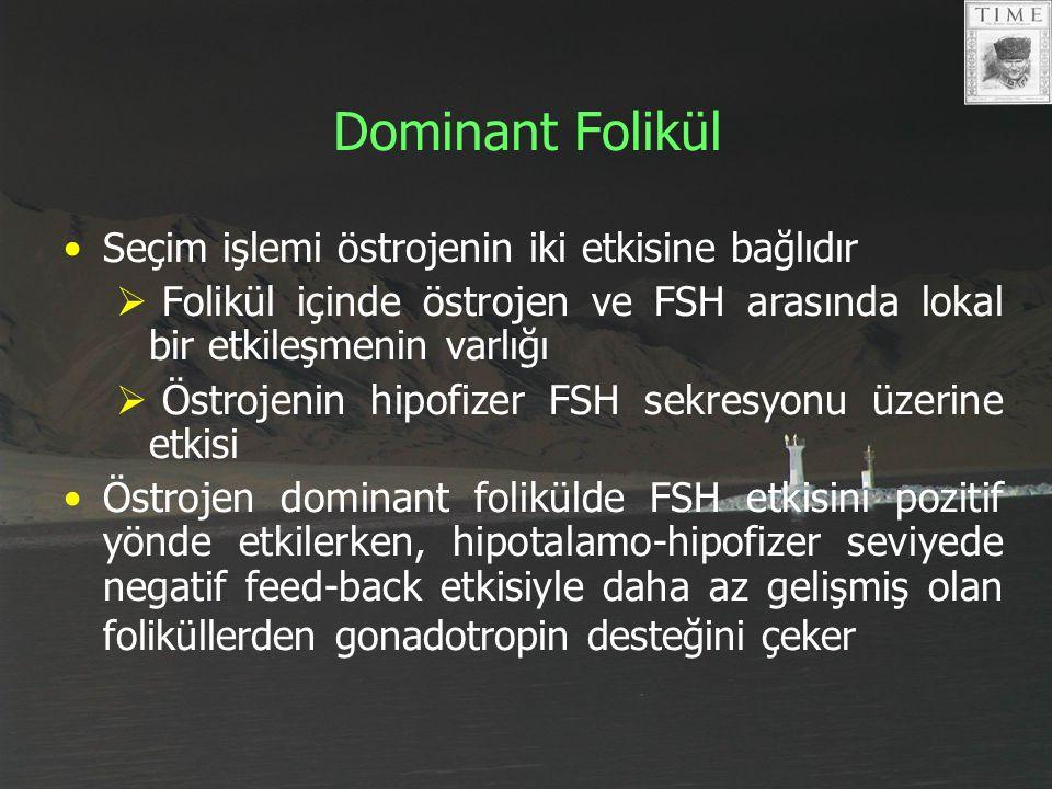Dominant Folikül Seçim işlemi östrojenin iki etkisine bağlıdır  Folikül içinde östrojen ve FSH arasında lokal bir etkileşmenin varlığı  Östrojenin h
