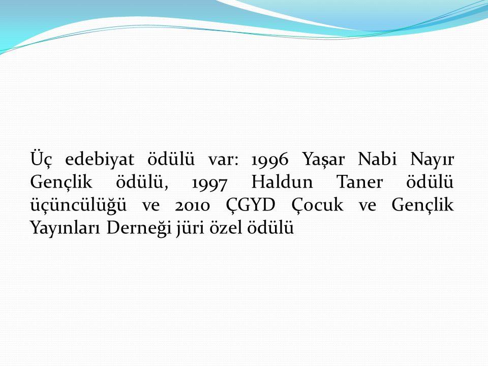 Üç edebiyat ödülü var: 1996 Yaşar Nabi Nayır Gençlik ödülü, 1997 Haldun Taner ödülü üçüncülüğü ve 2010 ÇGYD Çocuk ve Gençlik Yayınları Derneği jüri özel ödülü