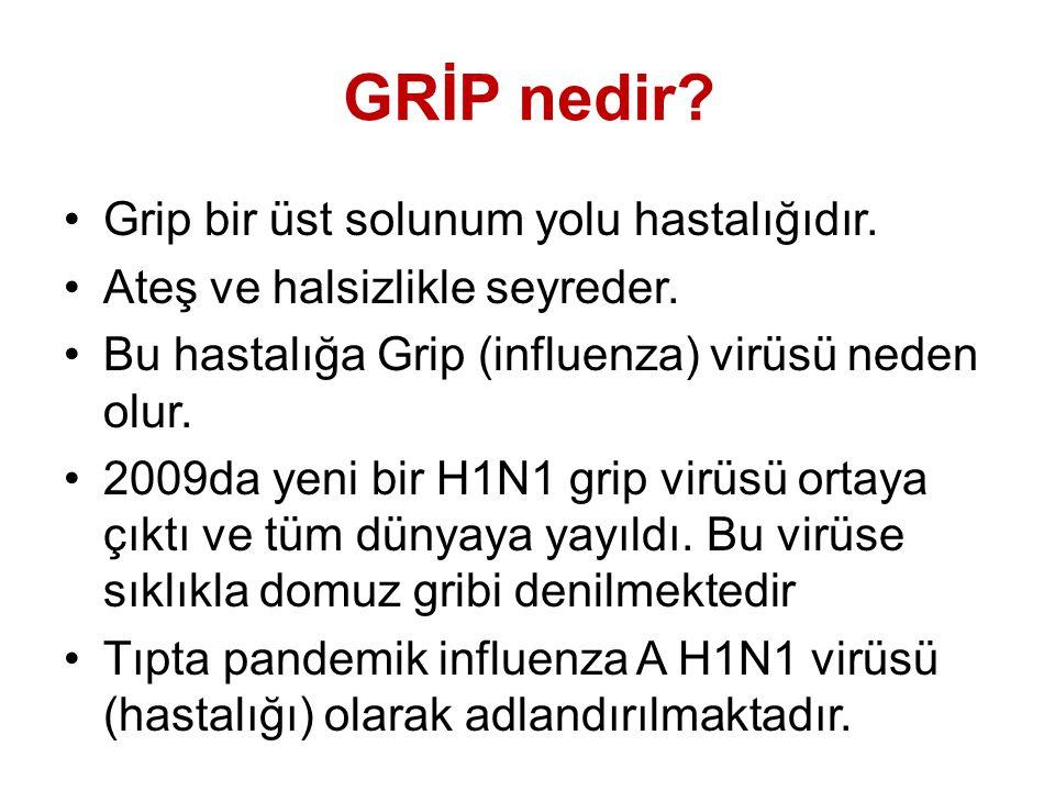 GRİP nedir. Grip bir üst solunum yolu hastalığıdır.