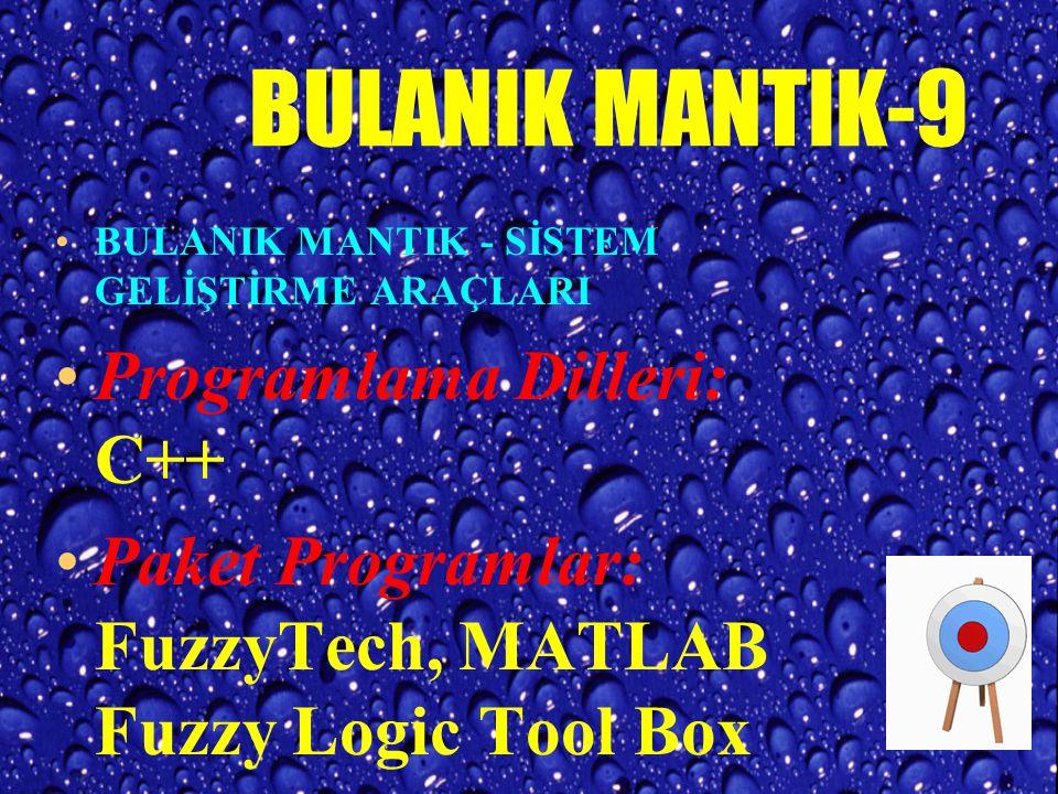 BULANIK MANTIK-8 Uygulama Alanlarından Örnekler