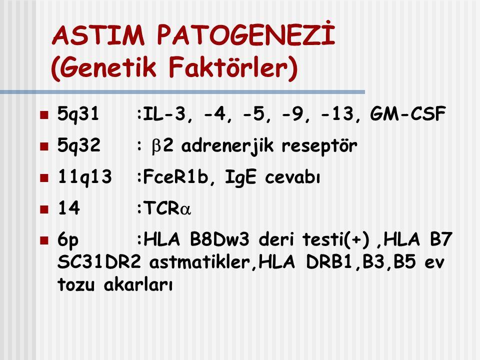 ASTIM PATOGENEZİ (Genetik Faktörler) 5q31 :IL-3, -4, -5, -9, -13, GM-CSF 5q32:  2 adrenerjik reseptör 11q13 :FceR1b, IgE cevabı 14:TCR  6p:HLA B8Dw3
