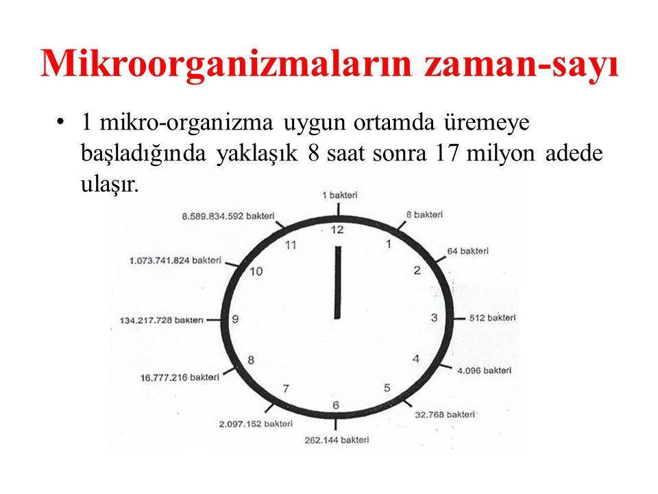 Mikroorganizmaların zaman-sayı 1 mikro-organizma uygun ortamda üremeye başladığında yaklaşık 8 saat sonra 17 milyon adede ulaşır.
