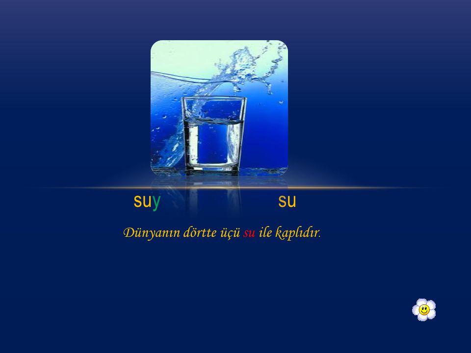 suysu Dünyanın dörtte üçü su ile kaplıdır.