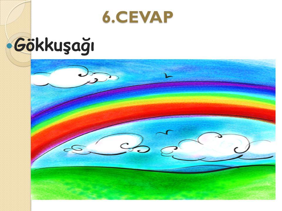 6.CEVAP Gökkuşağı