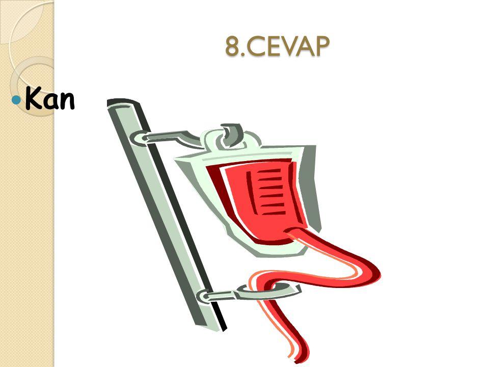 8.CEVAP Kan