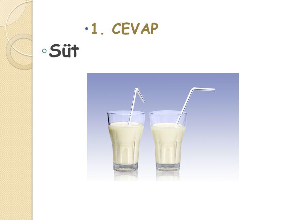  1. CEVAP ◦ Süt