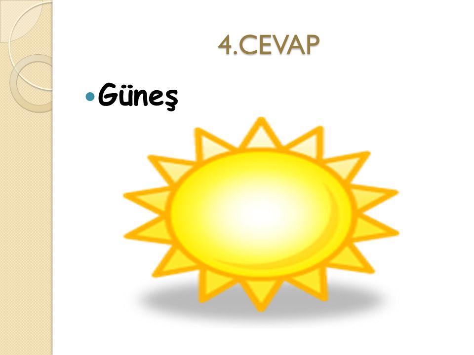 4.CEVAP Güneş